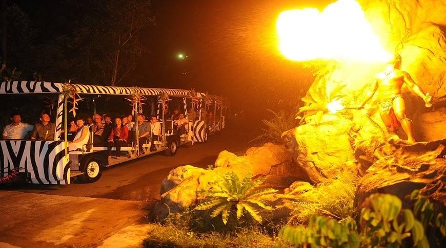 bali-safari-kesari-tours